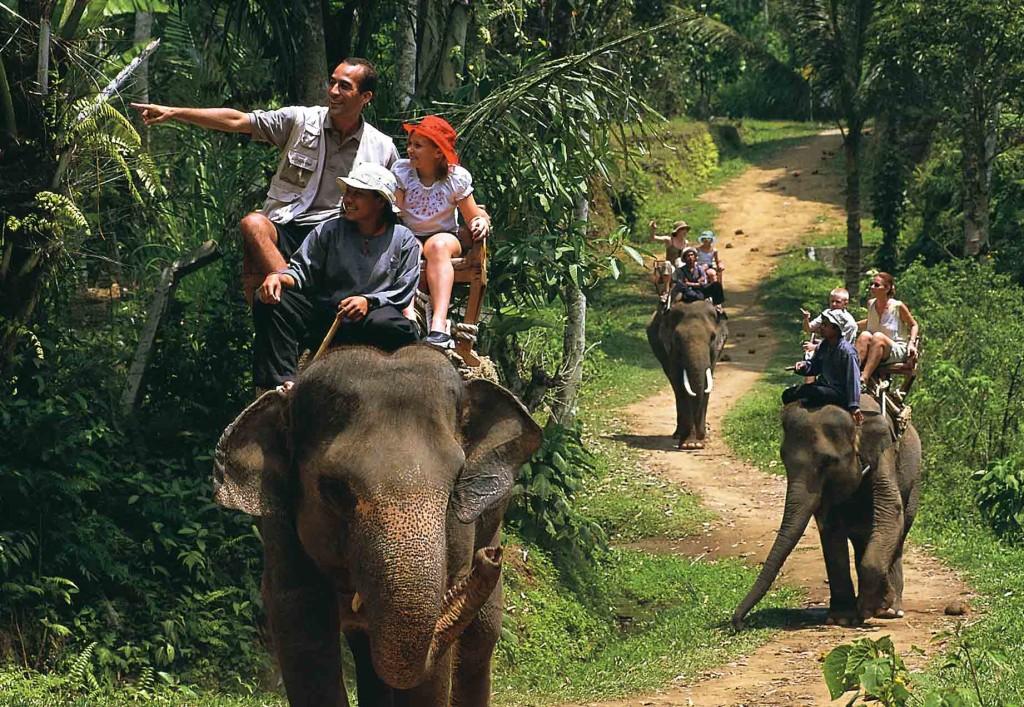B-elephant trek phuket