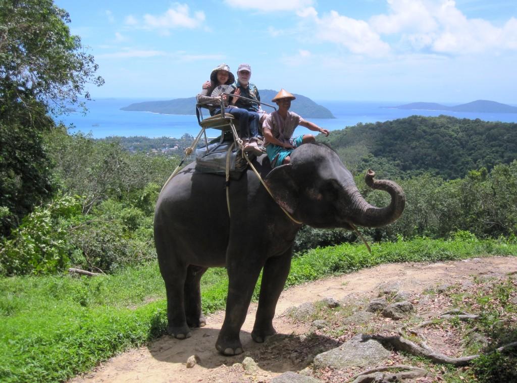 elephant ride phuket
